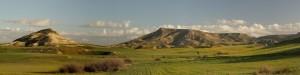 meadows_hills1